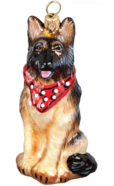 German Shepherd W/ Bandana